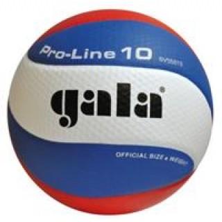 Lopta volejbalová GALA Pro line BV 5581S