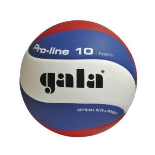 Lopta volejbalová GALA Pro line BV5121SA